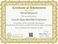 Lean Six Sigma Black Belt Training Certificate