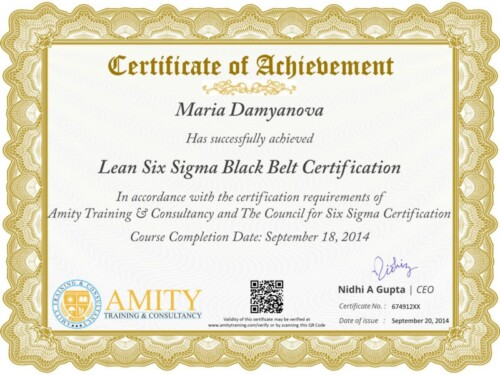 Lean Six Sigma Black Belt Training Certificate