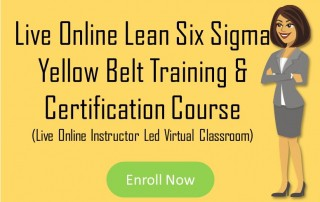 Online Lean Six Sigma Yellow Belt Training